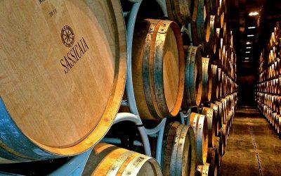 È il Sassicaia il miglior vino dell'anno